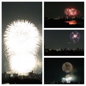20150815tamagawa